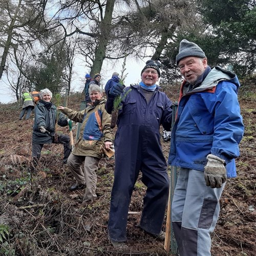 Volunteers plant trees on a steep slope on the Malvern Hills