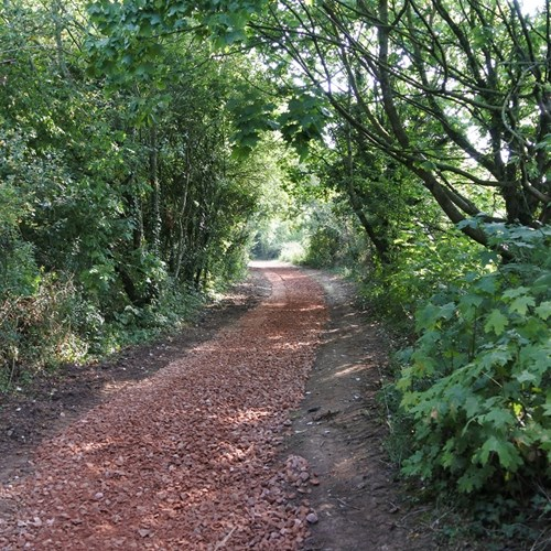 Path improvements Community Woodland (2) low res.jpg